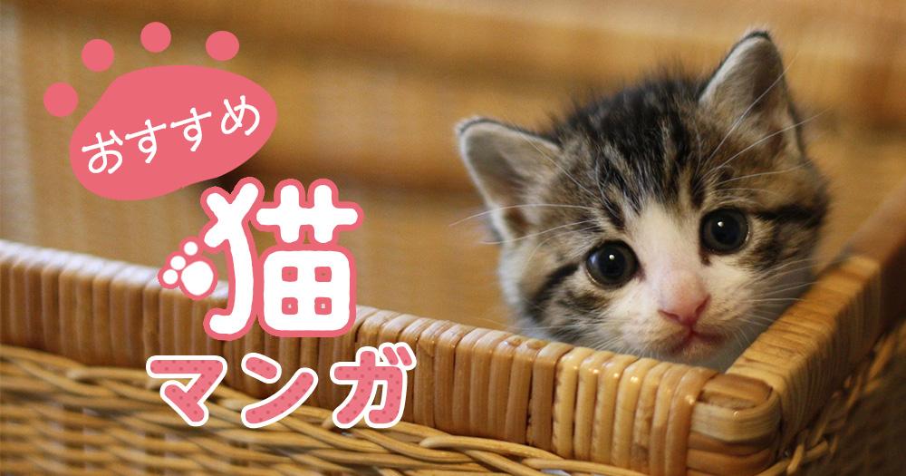 猫漫画おすすめ15選