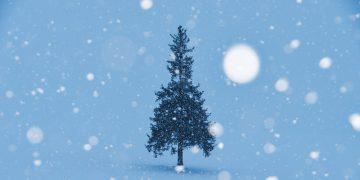 """クリスマス&冬にぴったり!心が""""ホッ""""とあたたかくなる本"""