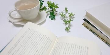 long-novel