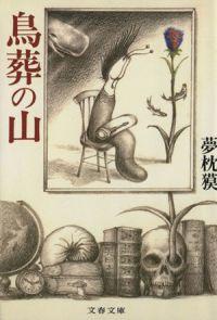 書籍『鳥葬の山』表紙