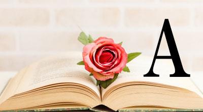 薔薇と本にアンサーマークが浮かんでいる