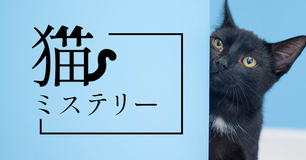 猫ミステリー